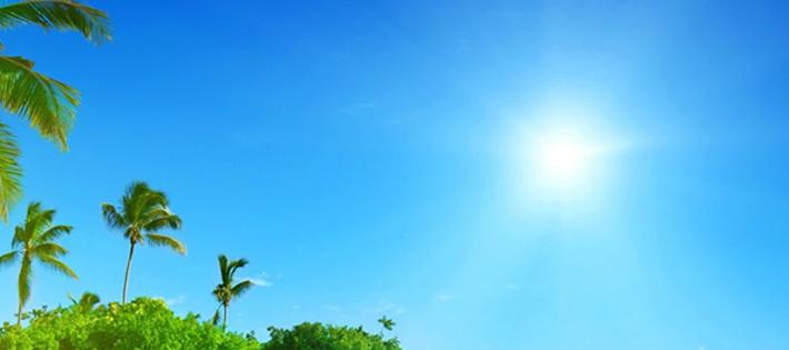 ハワイ・日差し