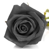 黒いバラの花言葉