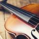世界一高いバイオリン!ストラディバリウスの魅力・高額な理由・所有者などを徹底紹介