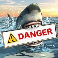 危険なサメ