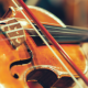 バイオリニストランキング